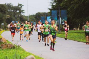 giai chay ecopark marathon 2019 04